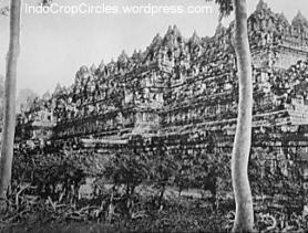 Borobudur sebelum direstorasi
