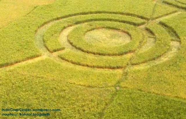 crop-circles-cikarang-close