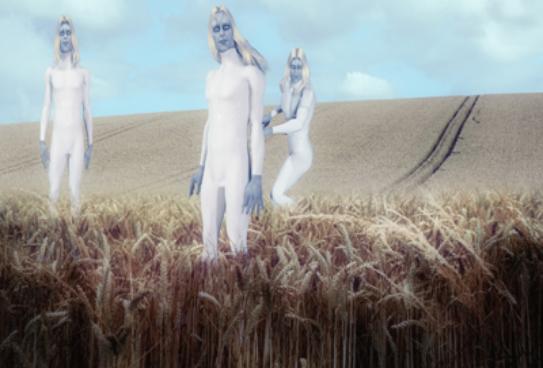 Tiga alien diladang gandum (ilustrasi)