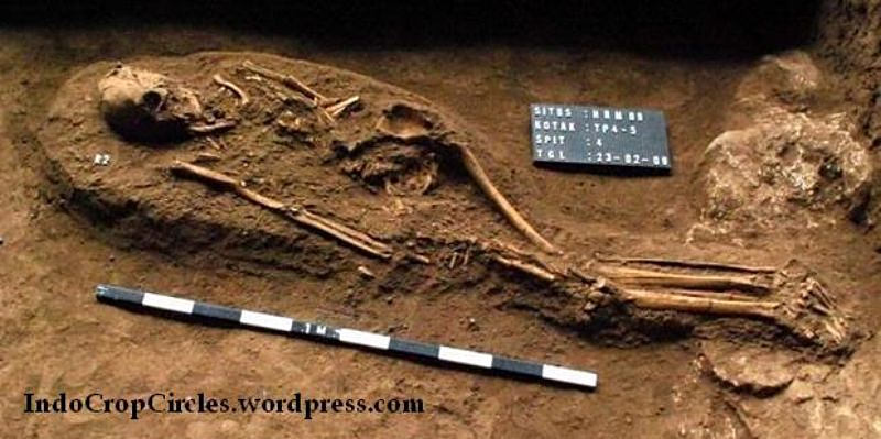 Fosil 3.000 tahun, panjang kerangka sekitar 2 meter, ditemukan di gua
