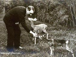 Hitler benci mereka yang berperilaku tak santun kepada binatang