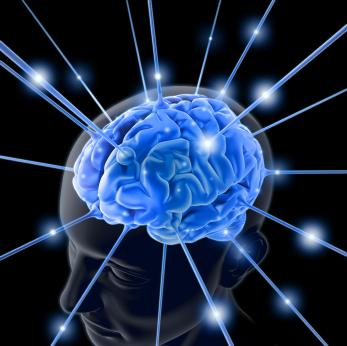 Memori Otak Bisa Dihapus? [ www.BlogApaAja.com ]