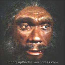 Denisovans (ilustrasi)