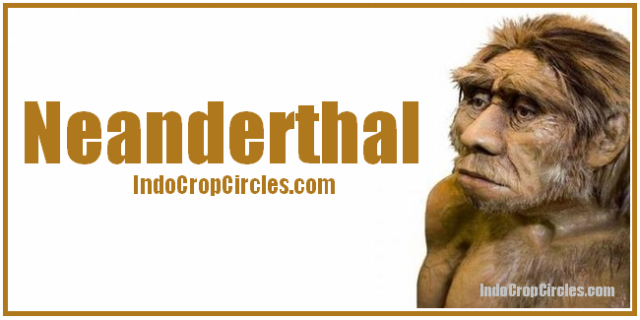 Manusia purba Neanderthal header