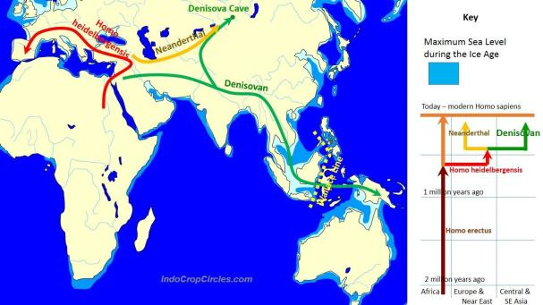 Spread_and_evolution_of_Denisovans - The Evolution and geographic spread of Denisovans as compared with other groups.jpg