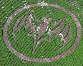 Crop Circles Dalponte Farms