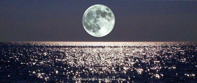 moon rise2