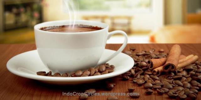 kopi coffee 02