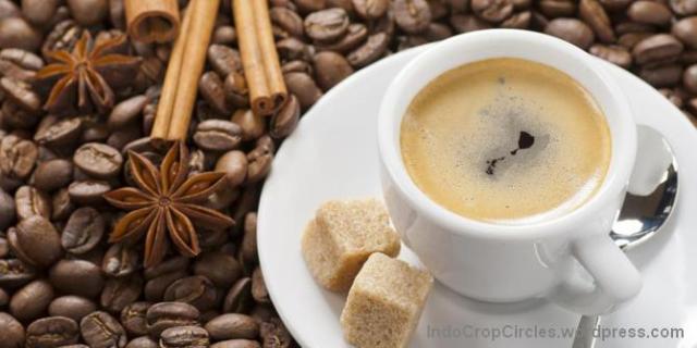 kopi coffee 04