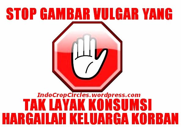 Stop gambar vulgar