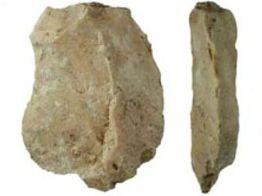 Peralatan batu yang ditemukan di Flores