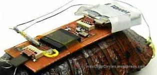 Robot Kecoa - www.jurukunci.net