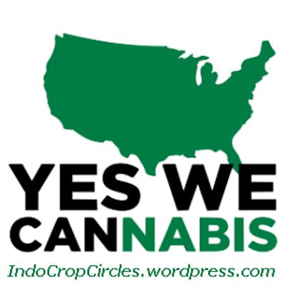 cannabis legal 05