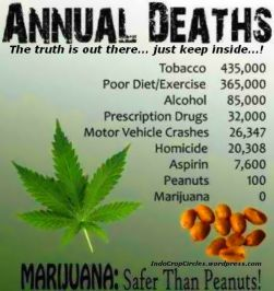 cannabis zero death