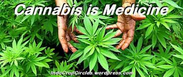 cannabis_header