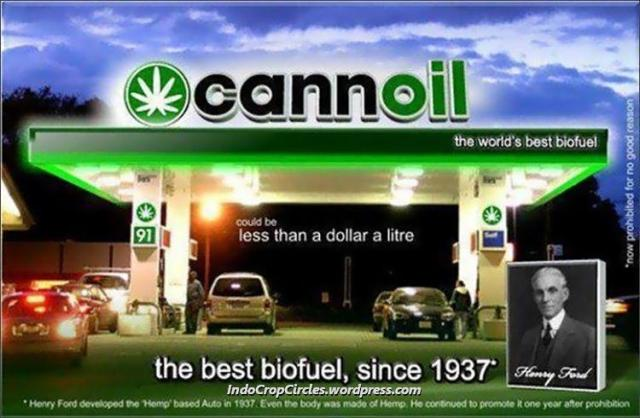 cannoil ganja cannabis biofuel