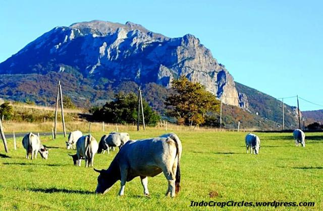 Gunung Pic de Bugarach, Prancis 04