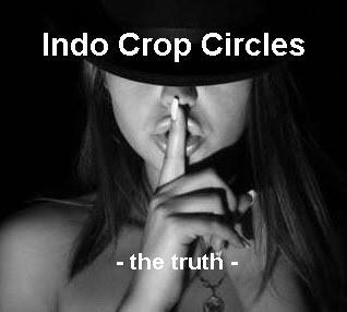http://indocropcircles.files.wordpress.com/2012/12/indo-crop-circles-logo.jpg