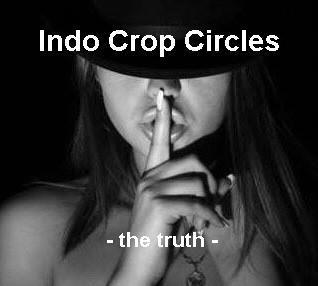 http://indocropcircles.files.wordpress.com/2012/12/indo-crop-circles-logo.jpg?w=640