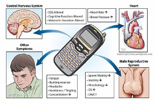ponsel hape cancer kanker 04