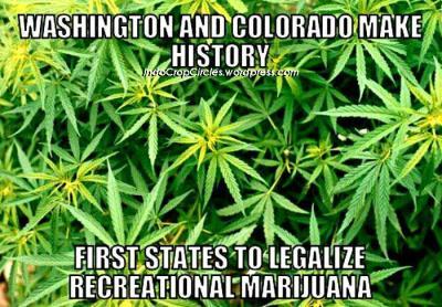 Washington colorado legal cannabis