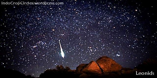 meteor leonids