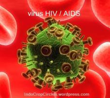 virus HIV/AIDS