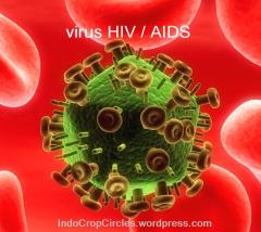 virus HIV AIDS