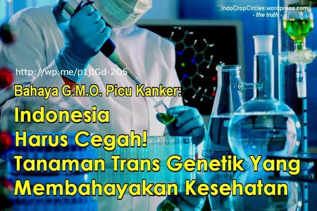GMO genetik indonesia