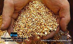 Gold biji emas