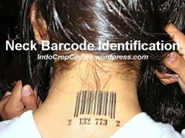 RFID neck arcode identification tattoo on back neck