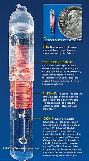 The RFID Chip 666 02