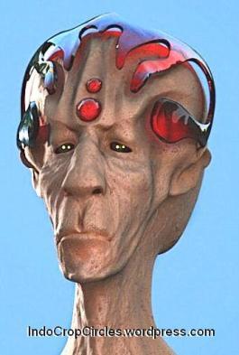 alien Procyon