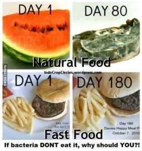 food cause cancers