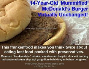 hamburger 14 years old