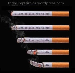 smoking causer cancer i-want-to-live-not-to-die