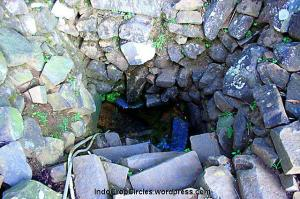 Sumur Cikahuripan di Gunung Padang