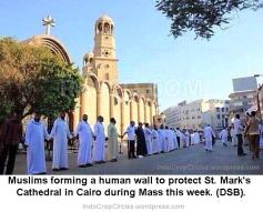egypt muslims protecting mosque