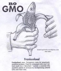 https://indocropcircles.files.wordpress.com/2013/08/gmo-corn-3.jpg