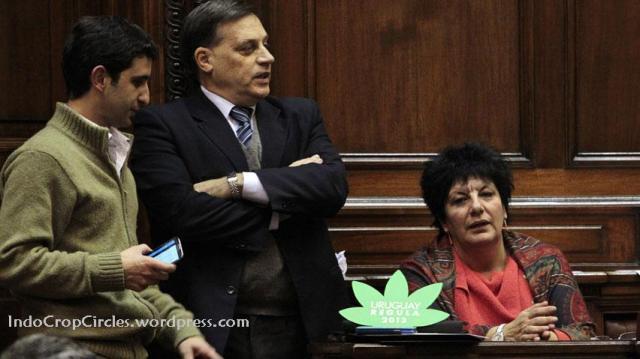 Uruguay legalise cannabis 01