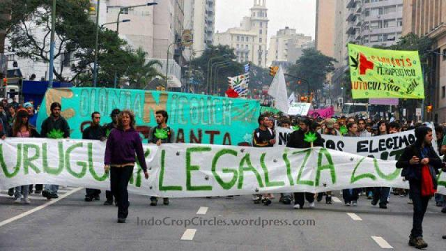 Uruguay legalise cannabis 02