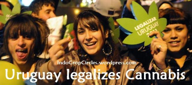 Uruguay legalise cannabis banner