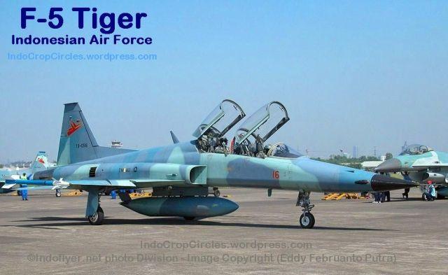 TNIAU_f5 Tiger 01
