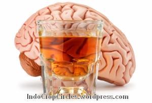 Alkohol-Mempengaruhi-Sistem-Saraf