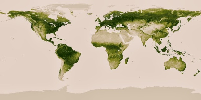 40 Maps That Will Help You Make Sense of the World - World Map of Vegetation on Earth