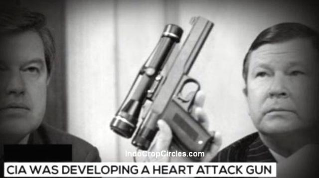 PISTOL SERANGAN JANTUNG heart attack gun 01