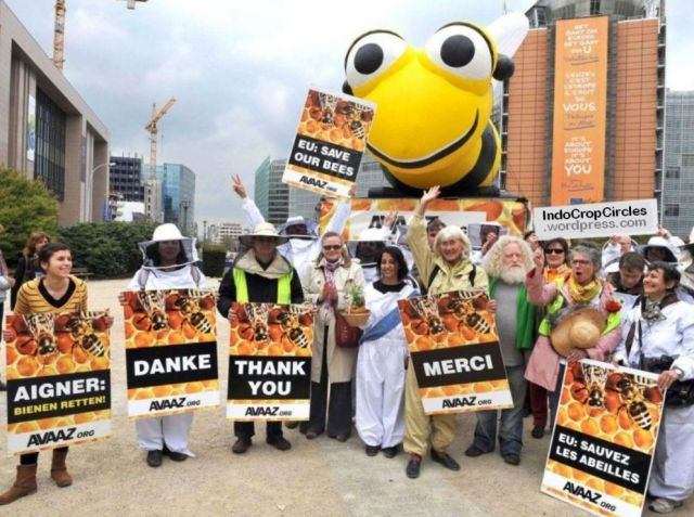 save the bees demonstation