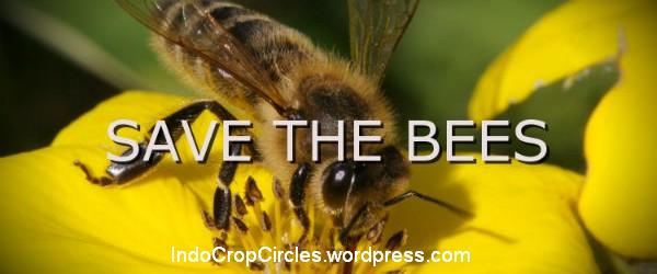 save the bees header