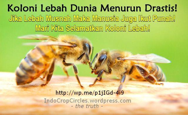 selamatkan lebah save the bees header