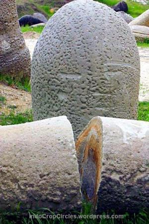 torvant-batu-yang-bisa-tumbuh-besar 01